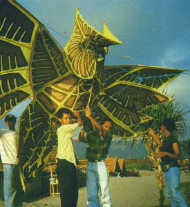 Indonesian bird kites